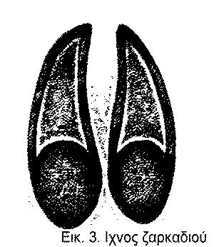 ixnos-zarkadiou